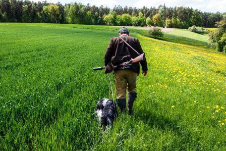 Jagd als Grundlage der Nachhaltigkeit in der Küche: Schwarzer Bock